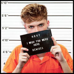 I Wish You Were Here (Remixes) - HRVY