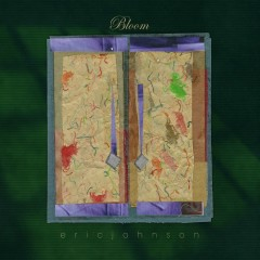 Bloom - Eric Johnson