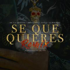 Sé Que Quieres (feat. Brytiago, Jon Z & Almighty) [Remix] - De La Ghetto, Almighty, Brytiago, Jon Z