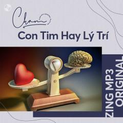 Chạm Series: Con Tim Hay Lý Trí - Various Artists