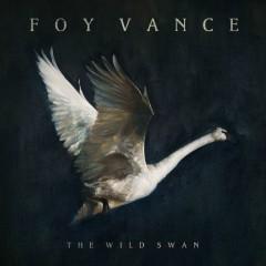 The Wild Swan - Foy Vance