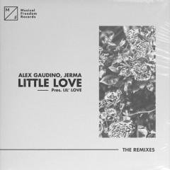 Little Love (pres. Lil' Love) [The Remixes] - Alex Gaudino, Jerma