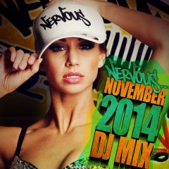 Nervous November 2014 - DJ Mix - Various Artists