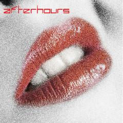 Global Underground: Afterhours 5 / Unmixed - Various Artists