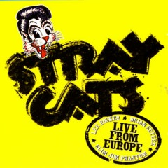 Live In Europe - Bonn 7/29/04 - Stray Cats