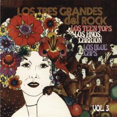Los Tres Grandes Del Rock Vol. 3 - Various Artists