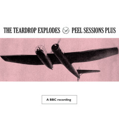 Peel Sessions Plus - The Teardrop Explodes