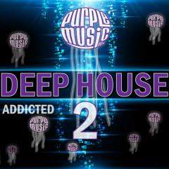 Deep House Addicted 2 - Various Artists