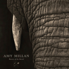 Masters Of The Burial - Amy Millan