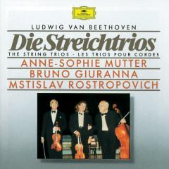 Beethoven: The String Trios - Anne-Sophie Mutter, Bruno Giuranna, Mstislav Rostropovich