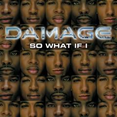 So What If I - Damage