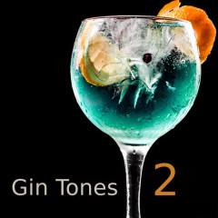 Gin Tones 2 - Various Artists