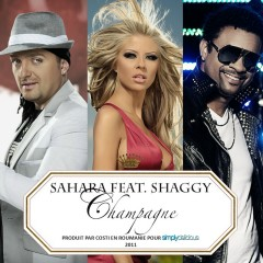 Champagne (feat. Shaggy) [Jump Smokers Radio Mix] - Sahara, Shaggy