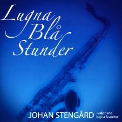 Lugna blå stunder - Johan Stengård