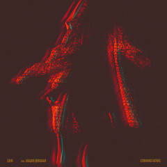 Coming Home (Single) - ZHU