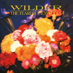 Wilder (Remastered Expanded Edition) - The Teardrop Explodes