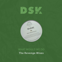 What Would We Do - The Revenge Mixes - DSK