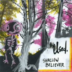 Shallow Believer - The Used