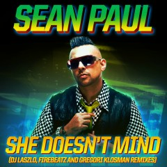 She Doesn't Mind (Remixes) - Sean Paul