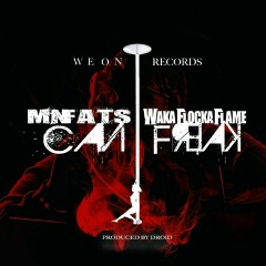 Can I Freak (feat. Waka Flocka Flame) - MN FATS, Waka Flocka Flame