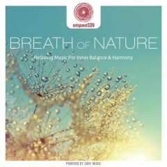 entspanntSEIN - Breath of Nature (Relaxing Music for Inner Balance & Harmony) - Davy Jones
