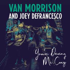 You're Driving Me Crazy - Van Morrison, Joey DeFrancesco