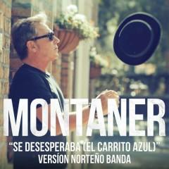 Se Desesperaba (El Carrito Azul) (Versíon Nortenõ Banda) - Ricardo Montaner