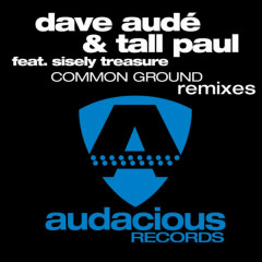 Common Ground - Remixes - Sisely Treasure, Dave Audé