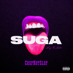 Suga (Chopnotslop Remix) - Megan Thee Stallion