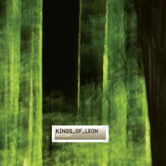 Notion - Kings Of Leon