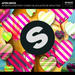 So Much Love (feat. Charly Black & Stevie Appleton) - Afro Bros, Charly Black, Stevie Appleton