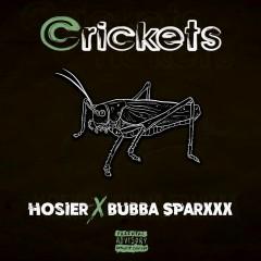 Crickets - Hosier, Bubba Sparxxx