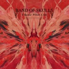 I Know What I Am digital single - Band Of Skulls