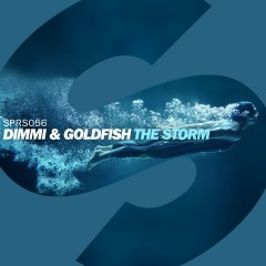The Storm - DIMMI, Goldfish