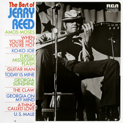 The Best of Jerry Reed - Jerry Reed