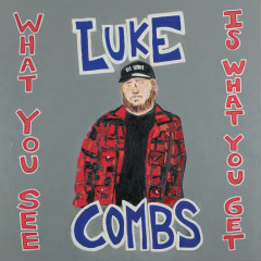 What You See Is What You Get - Luke Combs