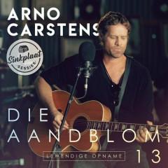 Sinkplaat Sessies (Lewendige Opname) - Arno Carstens