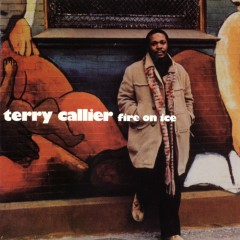 Fire On Ice - Terry Callier