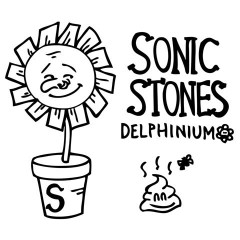 Delfinium (Single) - Sonic Stones