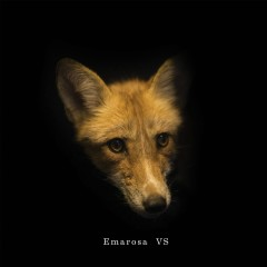 Versus Reimagined - Emarosa