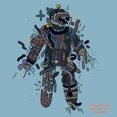 Digital Self (Remixes) - Karakter