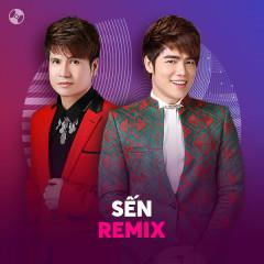 Sến Remix