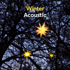 Winter Acoustic - Various Artists