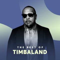 Những Bài Hát Hay Nhất Của Timbaland - Timbaland