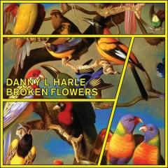 Broken Flowers - EP - Danny L Harle