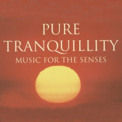 Pure Tranquility - Music For The Senses - New World Orchestra, Madrugada