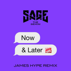 Now And Later (James Hype Remix) - Sage The Gemini