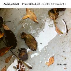 Franz Schubert: Sonatas & Impromptus - Andras Schiff
