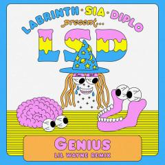 Genius (Lil Wayne Remix) - LSD