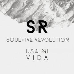 Usa Mi Vida - Soulfire Revolution